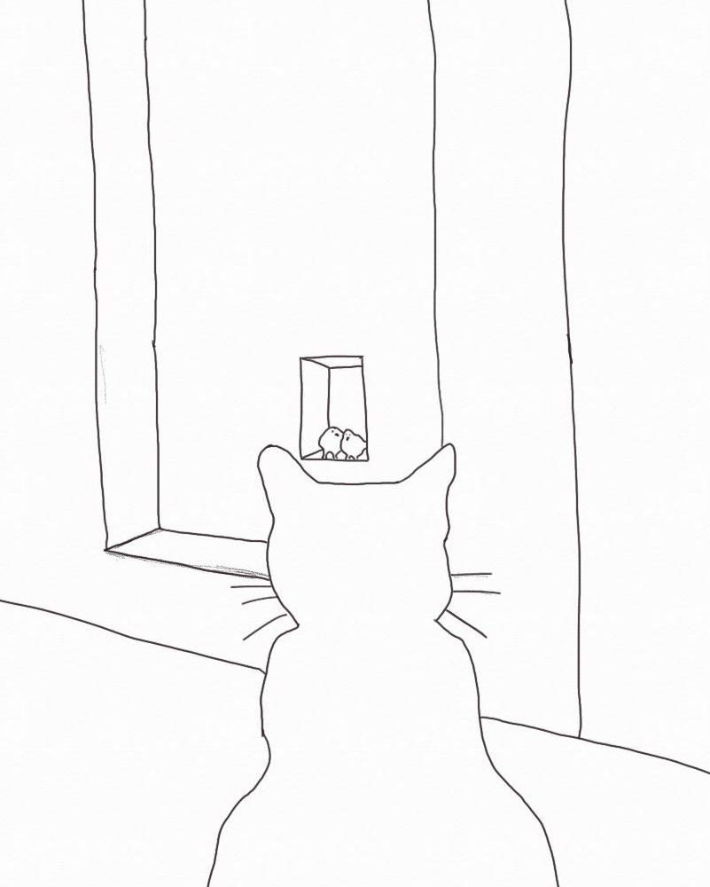Cat observing pigeons